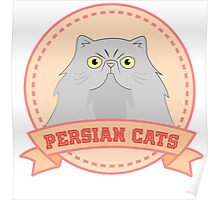 Persian Cats Poster