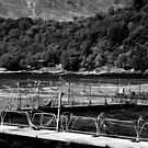 Loch Linnhe Fish Farm by Shalis