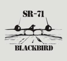 SR-71 Blackbird by hottehue