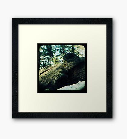 Ttv: Fallen Framed Print