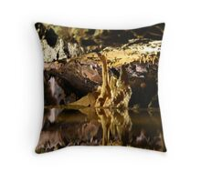 Underground in Cheddar Gorge Throw Pillow