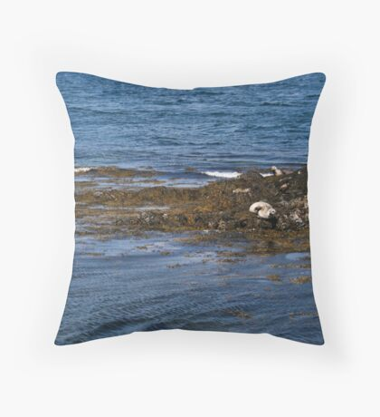 Who woke me up? Throw Pillow