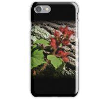 Raspberry Texture iPhone Case/Skin