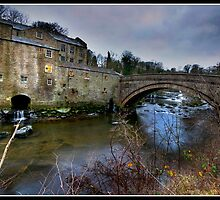 Aysgarth falls Mill by Shaun Whiteman
