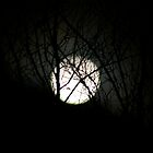 Full Moon Behind Winters Branches by SpiritFox