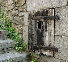 Behind the Door by SpiritFox