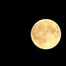 Full Moon Goddess by SpiritFox