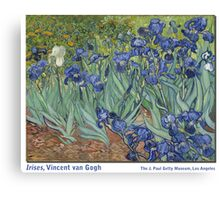 Irises by Vincent Vincent van Gogh Canvas Print
