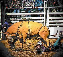 Bull Riding by Darlene Wilson