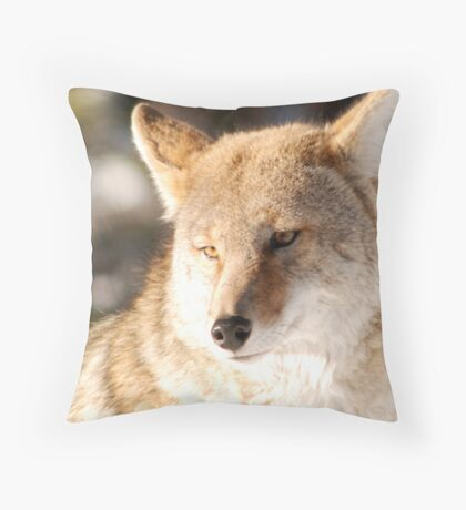 Coyote Throw Pillow