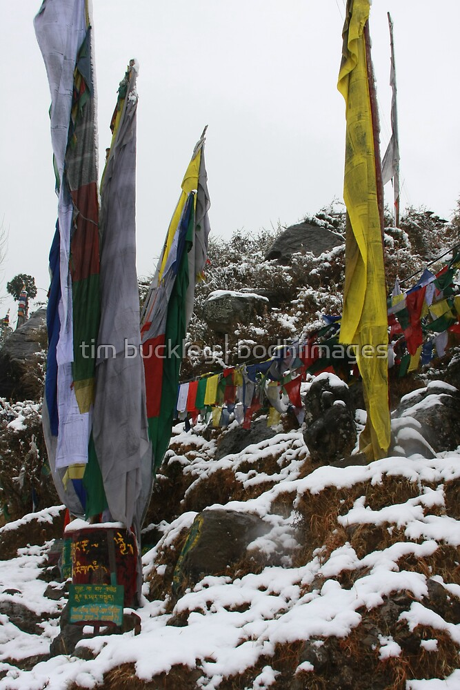 winter. indian himalaya by tim buckley   bodhiimages