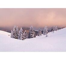 Purple snow Photographic Print