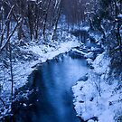 Winter Blues by Sue  Cullumber