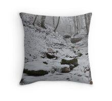 Frozen Winter Throw Pillow