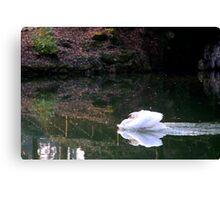 Missile? Arrow?.... no, simply Swan! Canvas Print
