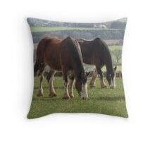 Majestic Calm Throw Pillow