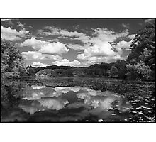 Pond, Late Spring Photographic Print