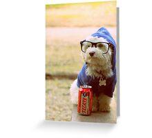 Puppy! Maltese! Greeting Card