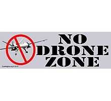 No Drone Zone No. 1 Photographic Print