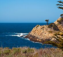 Point Lobos' Solitary Cypress by MarkEmmerson