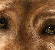 Expressive Eyes by Shelly Burden
