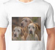 Fox Hounds (1) T-Shirt