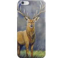 Stag by Helen Clark iPhone Case/Skin