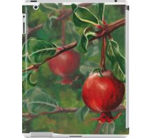 Hand Painted Red Pomegranate Fruit with Green Leaf Background iPad Case/Skin