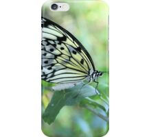 Pretty Butterfly Nature Photography  iPhone Case/Skin