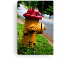 Old Rusty Canvas Print