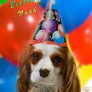 Birthday Boy! by Samantha Cole-Surjan