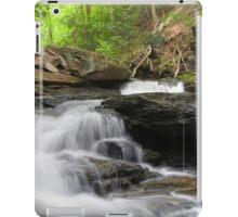 Just Below Seneca Falls  iPad Case/Skin