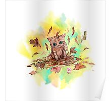Kitty cat playing in a pile of leaves. Autumn Poster
