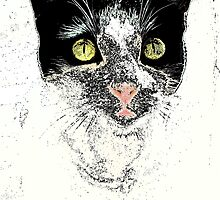 Speckled Cat Pop Art by DawsonMari