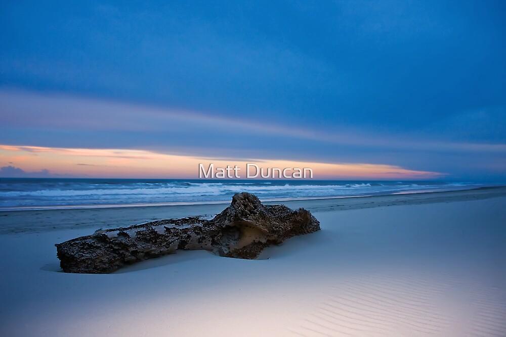 Beached by Matt Duncan