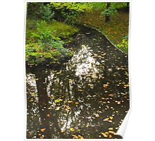 Autumn leaves, floating Poster
