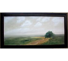 Back Country Road Photographic Print
