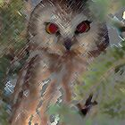 Colored Pencil Saw-Whet Owl by madmac57