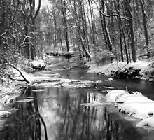 March snow on Pike Creek by nastruck