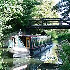 Murrays Bridge,  River Wey Navigation, Byfleet, Surrey by Colin J Williams Photography