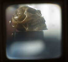 TTV- as seen through a kodak duaflex circa 1948 by Jason Platt