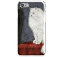Mikey and Roo iPhone Case/Skin