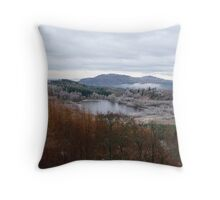 Hoar Frost attacks the Land Throw Pillow