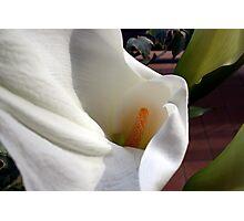 White shawl Photographic Print