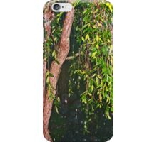 Weeping Willow In The Rain iPhone Case/Skin
