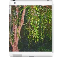 Weeping Willow In The Rain iPad Case/Skin
