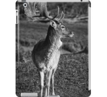 Young Deer iPad Case/Skin