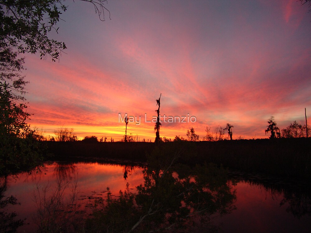 Sunset Lightshow by May Lattanzio