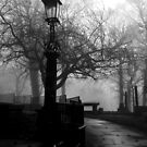 Lamp by Sophie Matthews