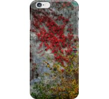 Northcountry Ode to Pollock iPhone Case/Skin